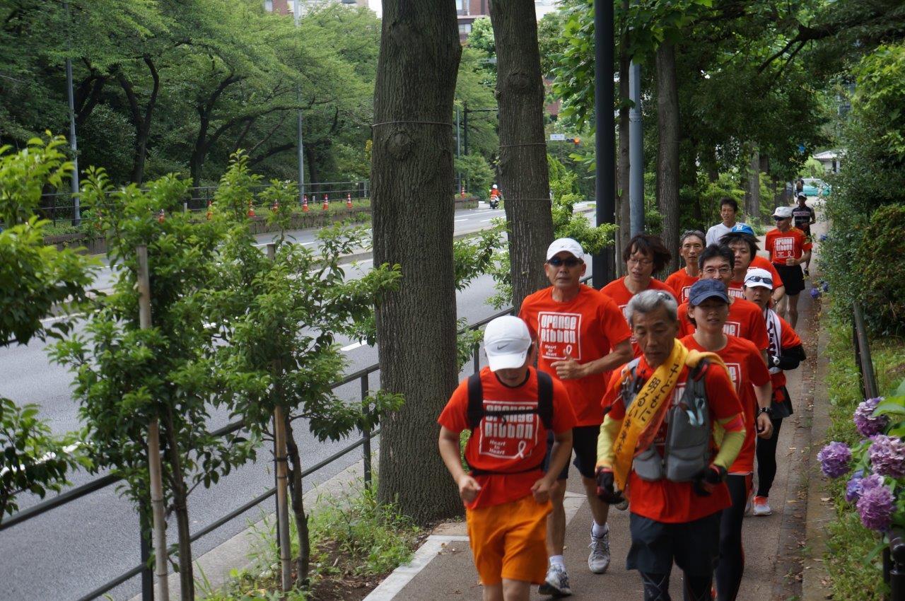 http://www.orangeribbon.jp/info/npo/images/DSC02809.jpg